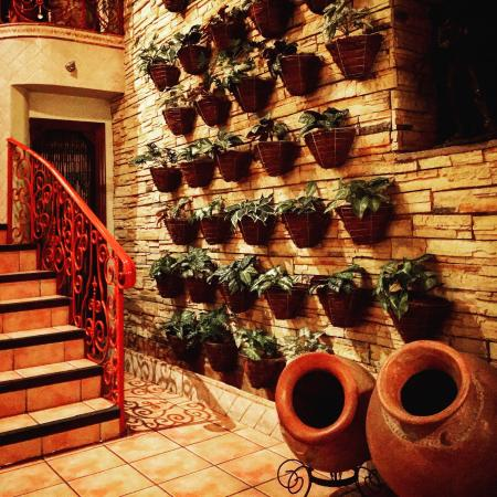 Hotel Casa Roland San Jose : photo0.jpg