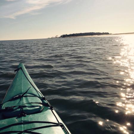 Savannah Canoe and Kayak : photo1.jpg
