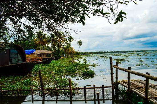Kuttanad, India: Kerala, Punnamada Beauty
