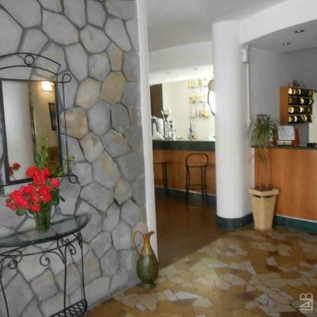 Hotel New Primula: www.hotelnewprimula.it #hotel #newprimula #rimini