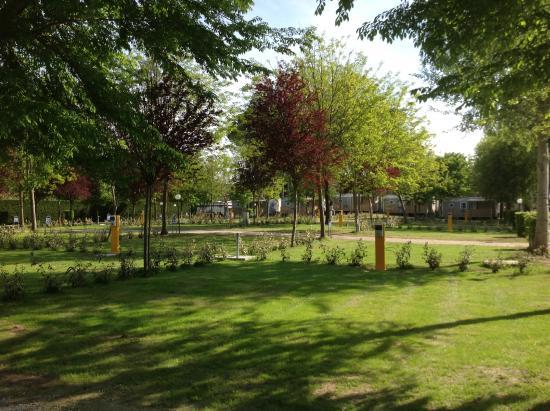 Camping Laguna Village: Piazzole per camper, roulotte e tende