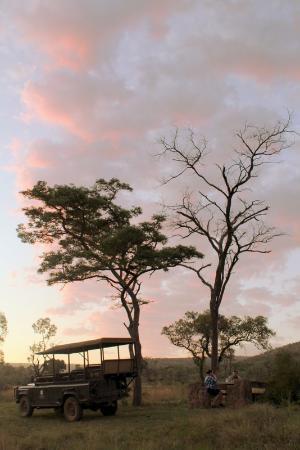 Mhondoro Game Lodge: Safari