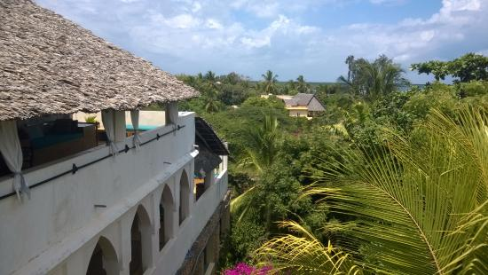 Banana House & Wellness Centre: view from the room