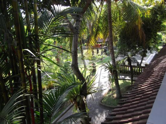 Puri Dalem Cottages: view from room balcony