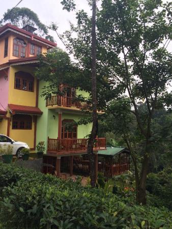 Entrance - Tea Forest Lodge Guesthouse Photo
