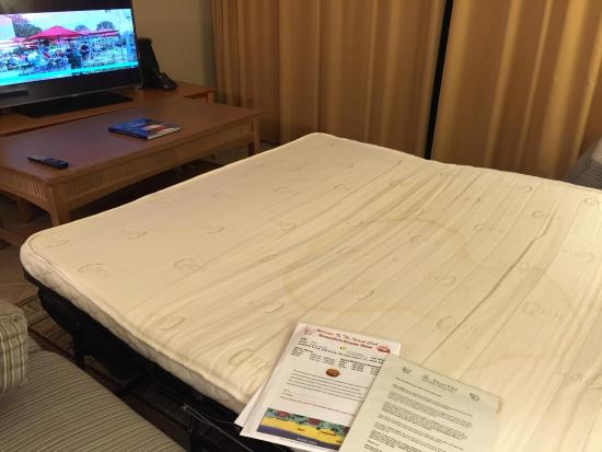 Ocean View at Island Club: Urine Stain in Sofa Bed Mattress, nauseating odor