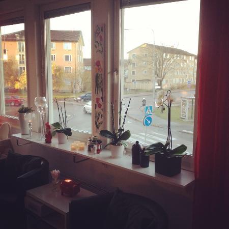 Hotell Stella : вид из зала для завтрака