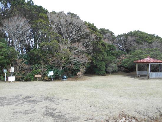 Ashigara Toge Joshi Park : ベンチも整備されています