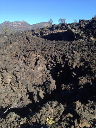 Sunset Crater Volcano National Monument: 溶岩のトレイル