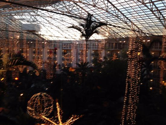 gaylord opryland resort convention center opryland hotel decorated for christmas
