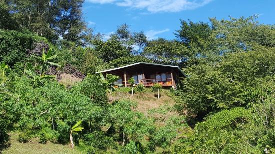 Toucanet Lodge : Novembre 2015 croisé le super Quetzal
