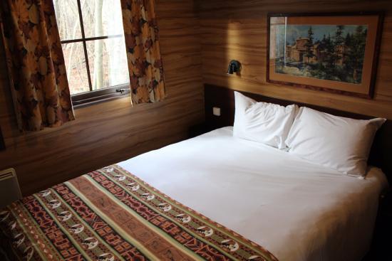 La chambre au lit double picture of disney 39 s davy for Chambre 9m2 lit double