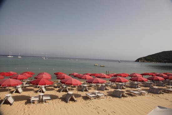 Проччио, Италия: Lo stabilimento balneare il Delfino - Procchio - isola d'Elba