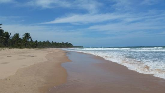 Barra Grande, BA: Passeio na Praia Arandis