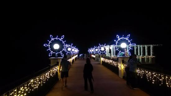 Holiday light up bridge picture of florida botanical Largo botanical gardens christmas lights