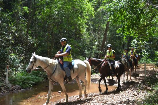 Amamoor, Australien: Mary Valley Adventure Trails - Day Tours