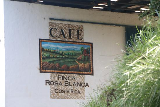 Finca Rosa Blanca Coffee Plantation & Inn: Coffee tour