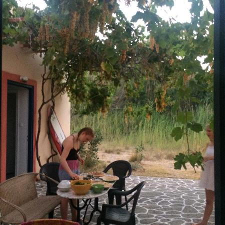 Agios Fokas, Grecia: Having dinner in our lovely courtyard with the yummy grape vines