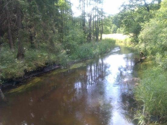 Suwalki, Polônia: Czarna Hańcza przy ujściu do Wigier