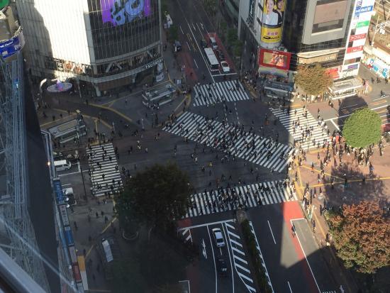 Shibuya Excel Hotel Tokyu: photo0.jpg