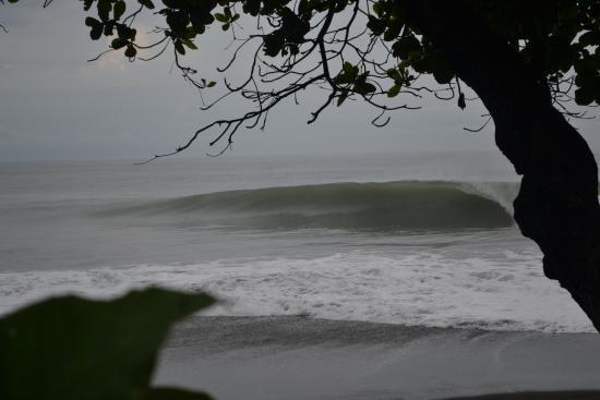 Terraza del Pacifico: Vista de frente ao mar