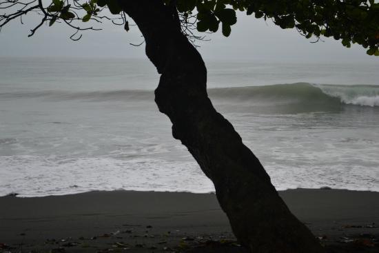 Playa Hermosa Wildlife Refuge: Pico em frente ao Hotel Terraza