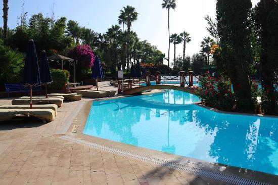 Very extensive pool area.  Nice pool