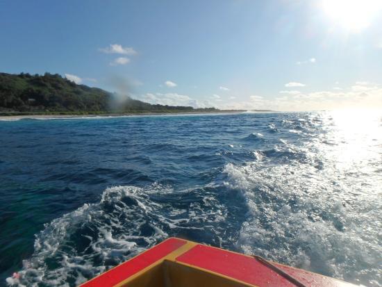 Islas de la Sociedad, Polinesia Francesa: 沖でクジラ探し