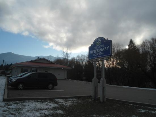 Creston, Kanada: Seems like a good motel for people that are getting their pets attended to.