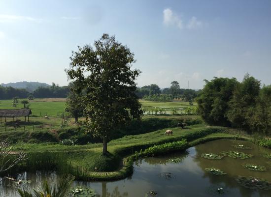Pa Sak Tong: Beautifully views from the hotel
