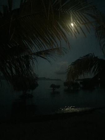 Two Seasons Coron Island Resort & Spa: Moon light