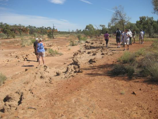Barcaldine, Australia: Ancient Bullock Cart Ruts