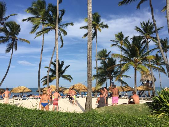 Dreams Palm Beach Punta Cana Volleyball Court There Was Always A Going On