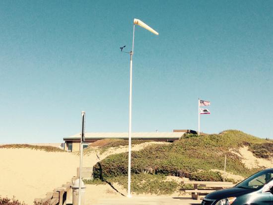 Motel 6 Monterey - Marina: Ranger patrol beach dogs on leash allowed