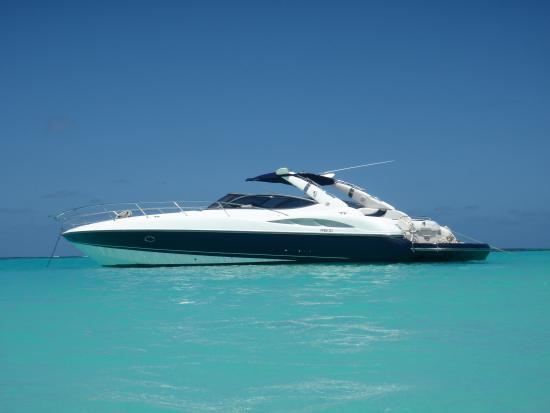 Seven Marine Charters: Sunseeker 50 Private boat charters St Maarten