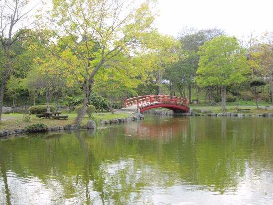 鶴ケ岱公園