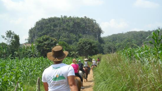 Knowing Vinales Tour