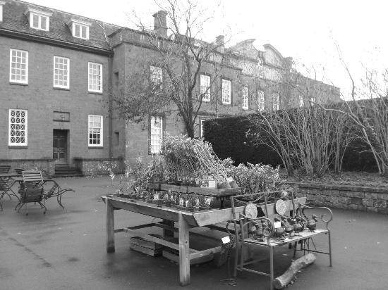Upton House: Plant shop
