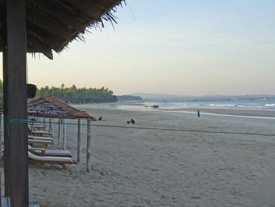 The Palm Beach Resort : Massive Beach Front
