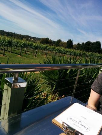 Barmah Park Vineyard Cafe: Sitting outside overlooking the vineyard