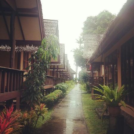 Phangan Cottages: IMG_20141108_123614_large.jpg
