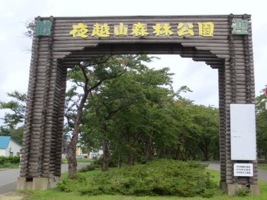 Mt. Yogoshi Forest Park