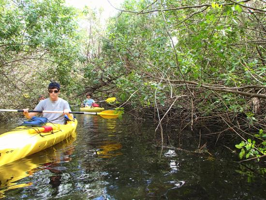 Kayaks & Stuff of the Treasure Coast: Kayaks & Stuff Tour