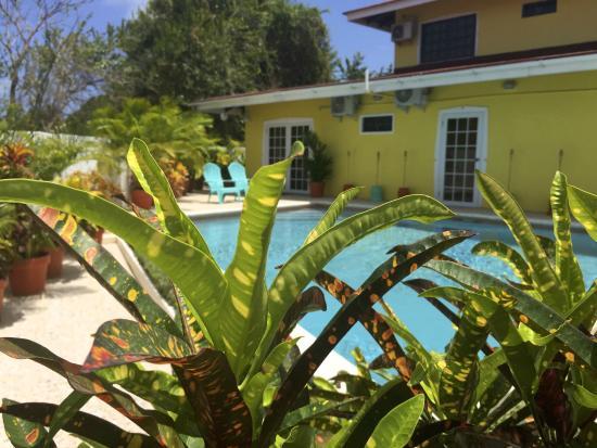 Dash Villa Poolside...