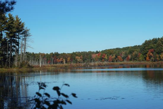 Sudbury, MA: Autumn is a beautiful time on the refuge!