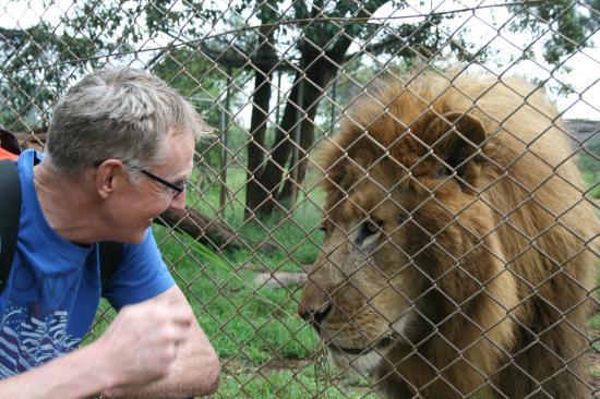 Nairobi Education Centre - Animal Orphanage: Hello pussy!