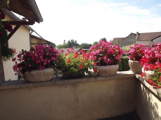 St Boil, Frankrike: terrasse ombragée