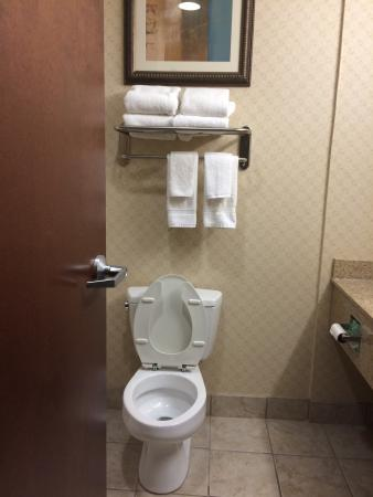 Comfort Suites Olive Branch: nice hotel.  there was some hair in the tub.  Couldn't load the photo .   Had my own cleaning wi
