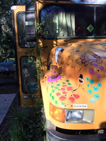 Canoe Outpost - Little Manatee River: Front art work on bus