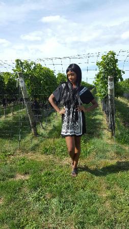 Wine Tour New York Tammy
